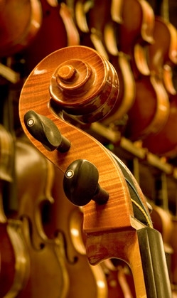 Violin Repair Program